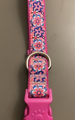 Large Dog Collar for Sale in Langhorne,  PA