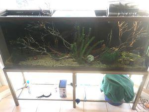 75 Gallon Fish tank and LOT of accessories for Sale in Escondido, CA