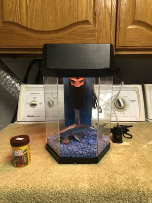 2gl Betta Fish Tank with Accesories for Sale in Burbank, IL