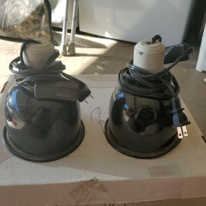 Reptile Lamps for Sale in Corona, CA