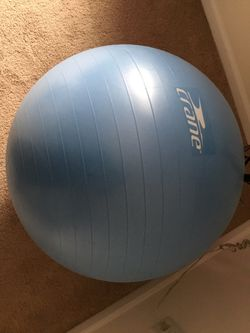 Exercise Ball for Sale in Wayne, IL