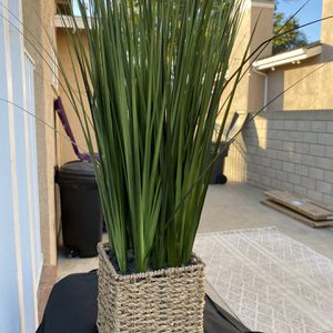 Small Plant (fake) for Sale in Long Beach, CA