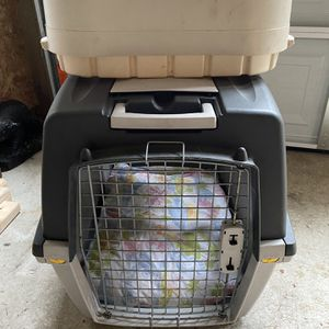 Dog Bundle for Sale in Marysville, WA