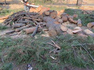 FREE PINE TREE WOOD for Sale in Redlands, CA
