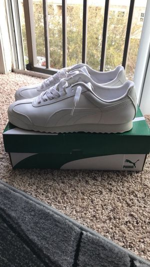 Pumas for Sale in Tampa, FL