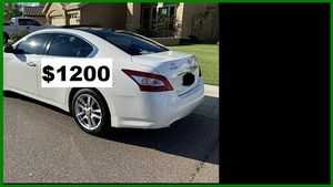 $1200 MAxima SV for Sale in Wichita, KS