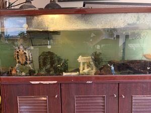 Glass aquarium for Sale in Vancouver, WA