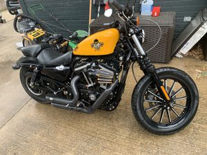 2011 Harley Davidson iron 883 low for Sale in Grand Prairie, TX