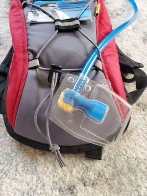 Camelbak hydration backpack for Sale in Auburn, WA