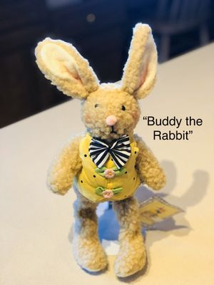 Mary Engelbreit Buddy the Rabbit Collectible Plush Toy for Sale in Glendale, AZ