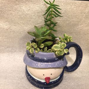 Mrs. Snowman Ceramic Cup With Succulents Plants 🎄⛄️ for Sale in Bakersfield, CA