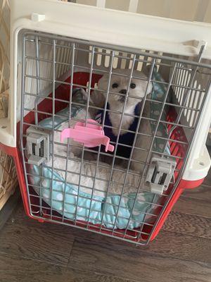 Dog crate for Sale in Manassas, VA