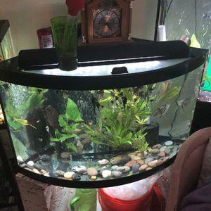 aquarium for Sale in North Haven, CT