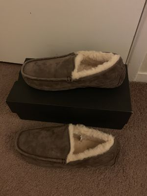 100% Authentic Brand New in Box UGG Ascot Slippers / Men size 8 and Men size 9 for Sale in Walnut Creek, CA