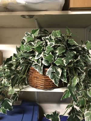 Fake plants in display baskets for Sale in Colorado Springs, CO