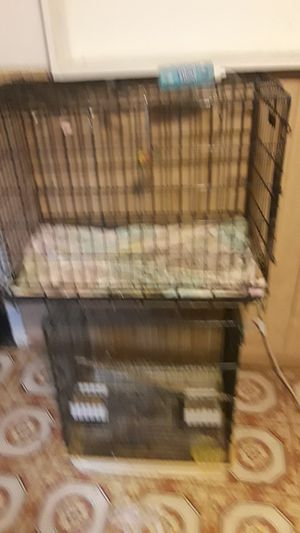 Dog cage. /, bird cage for Sale in Bladensburg, MD