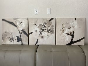 Cherry Blossom Flower Black and White 3 pieces Wall Art for Sale in Palm Shores, FL