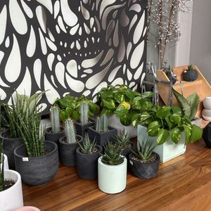 Hand Crafted Planters With Plants Made By My Small Business! Please Read Description! for Sale in Castro Valley, CA