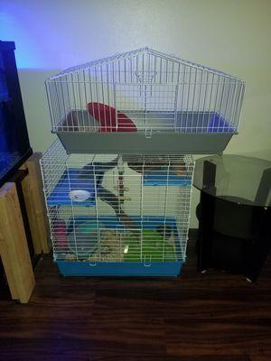 Pet chinchilla, cage... for Sale in San Diego, CA