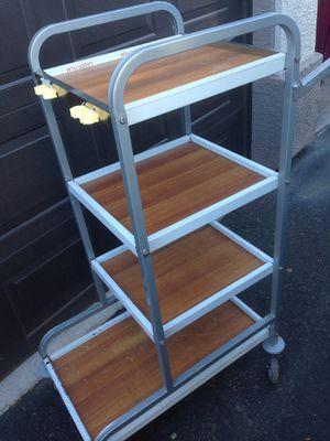 Professional rolling shelf rack for Sale in Chandler, AZ