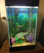 15 gallon aquarium complete for Sale in Antioch, CA