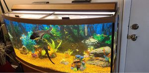Fish tank for Sale in Providence, RI