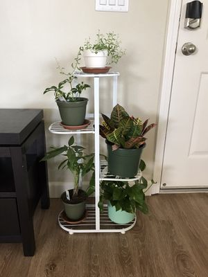 Plant stand (plants and pots not included ) for Sale in Dublin, CA