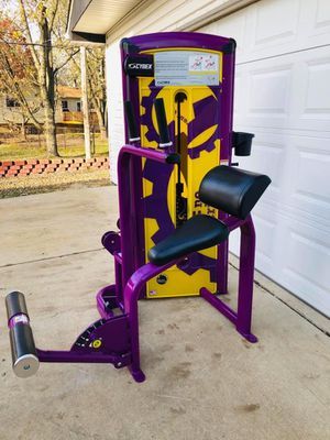Abdominal Machine - Cybex Abdominal - Gym Equipment - Work Out - Fitness - Exercise - Commercial for Sale in Downers Grove, IL