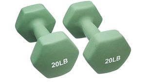 AmazonBasics Neoprene Dumbbell Hand Weights 20lbs set (40 lbs total) NIB for Sale in Fairfax, VA
