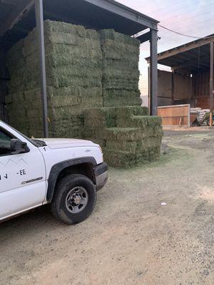 Pacas de alfalfa 15 dls midway feed riverside for Sale in Riverside, CA