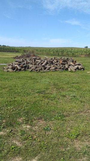 Walnut firewood 65 a truck load for Sale in Marshall, MI