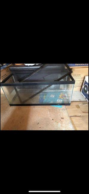25 gallon terrarium for Sale in Smyrna, TN
