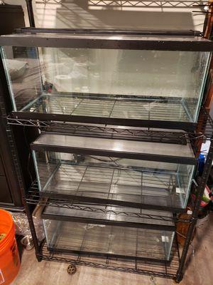 3 aquarium rack for Sale in Seattle, WA
