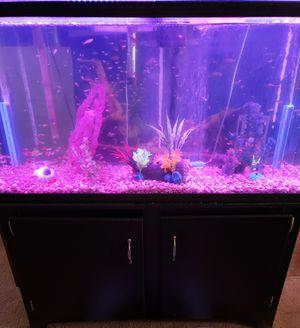 60 Gallon Fish Tank with Light & Remote for Sale in Wichita, KS