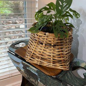 Vintage Boho Wicker Plant Basket for Sale in Glendale, AZ