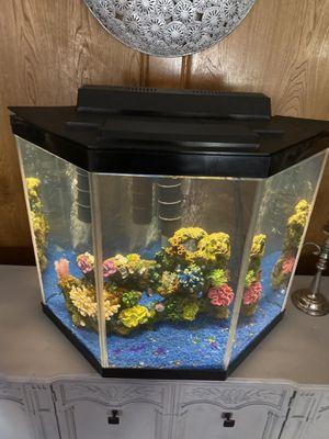 Pentagon Tank Aquarium for Sale in Rowlett, TX