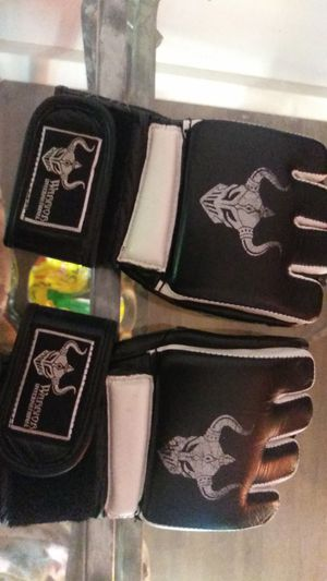 Boxing gloves for Sale in Wheat Ridge, CO