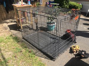 Folding Dog Crate for Sale in Clackamas, OR