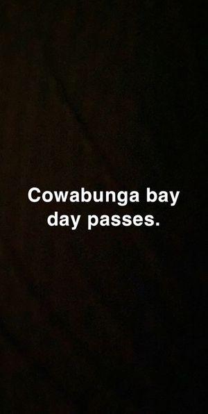 Cowabunga bay passes for Sale in Las Vegas, NV
