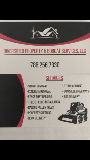 Bobcat for Sale in South Miami, FL