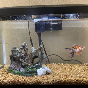 Fish Tank 10 Galon With 1 Goldfish for Sale in Sun City Center, FL