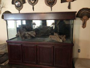265 gallon aquarium with accessories for Sale in Aurora, TX