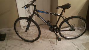 Roadmaster Men's Mountain Bike for Sale in Coral Springs, FL