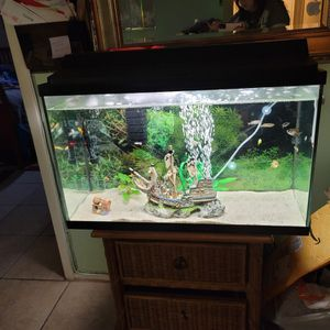 Fish Tank 45gal for Sale in Haines City, FL