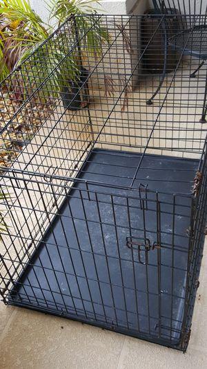 Dog kennel for large dog for Sale in Union Park, FL