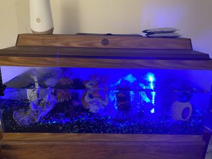 Fish tank w/ stand for Sale in Essex, MD
