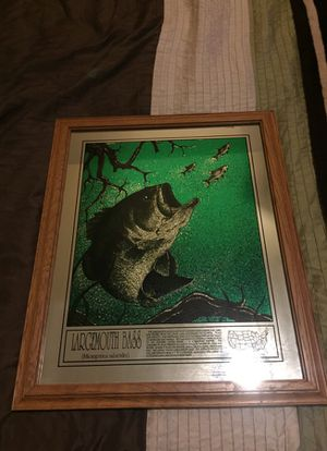 Large Mouth Bass picture and frame for Sale in Berwyn, IL
