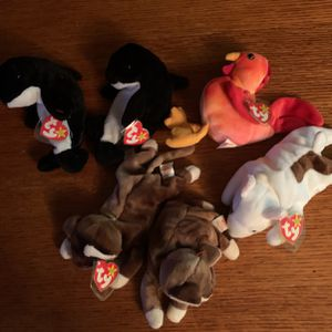 Beanie Babies , large Collection , Some Rare for Sale in Cantonment, FL