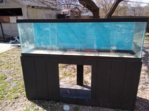 Fish tank and accesories in ecxellent condition all for 400 for Sale in Kansas City, KS