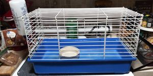 Like new larg cage w all u see 12dol firm lots deals my post go look for Sale in Jupiter, FL